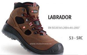 SIXTON_LABRADOR_S3__96119-300x400.jpg